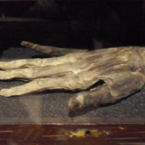 whitby-museum-hand