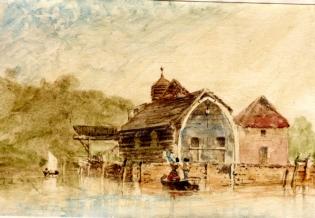 whalebone shed